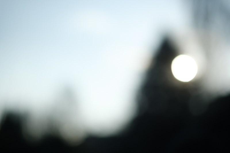 03.02.2019, Hamburg, Deutschland - Unscharfer Garten. Sonne hinter dunklem Baum. (Unschaerfe, Licht, Lichtreflexe) MODEL RELEASE: NOT APPLICABLE, PROPERTY RELEASE: NO